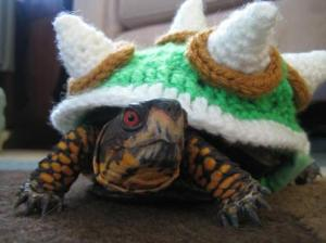 myrtle-in-a-bowser-sweater